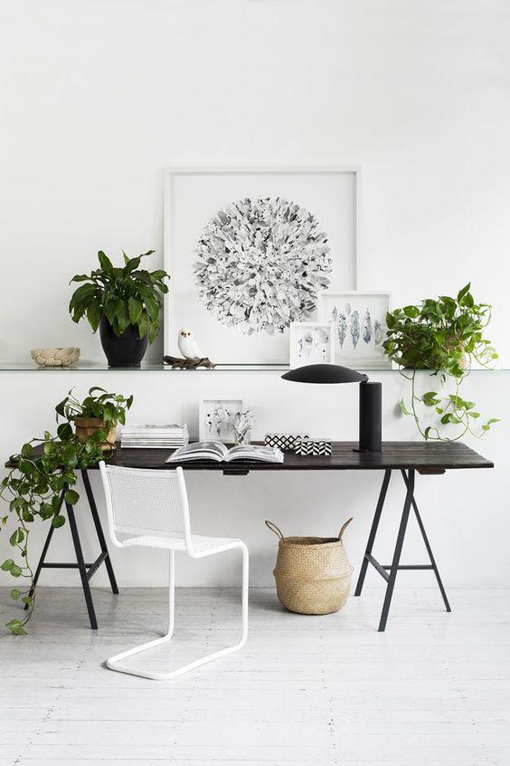 ایده طراحی داخلی با گلدان های سبز