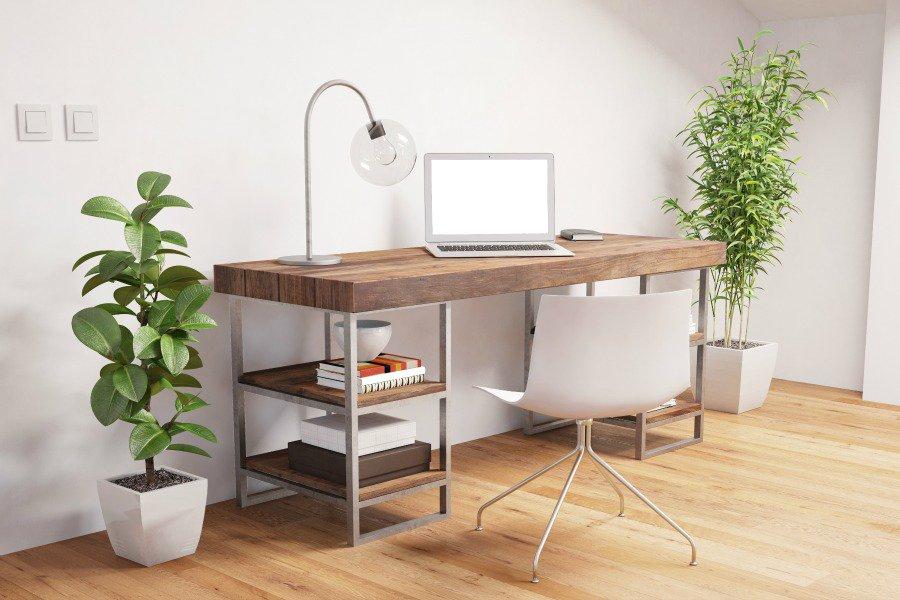 گل و گیاه در طراحی داخلی اتاق کار