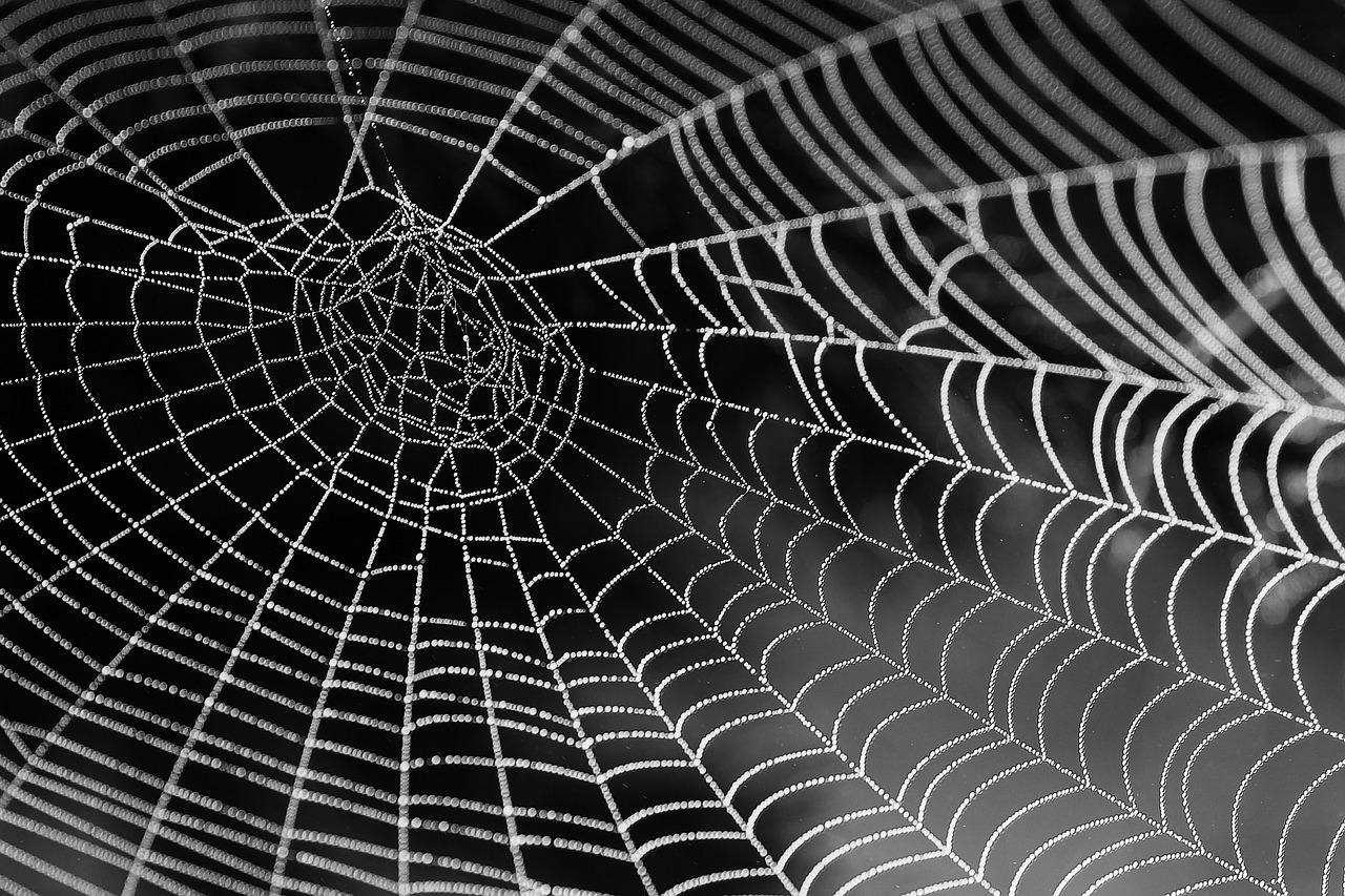 ۱۰ روش عنوان نویسی در تولید محتوا به روش تار عنکبوتی  ( روش ۳ و ۴ را حتما انجام دهید )
