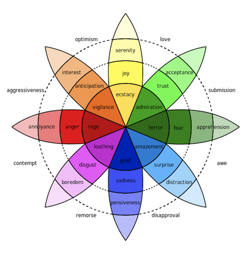 چرخ پلاچیک